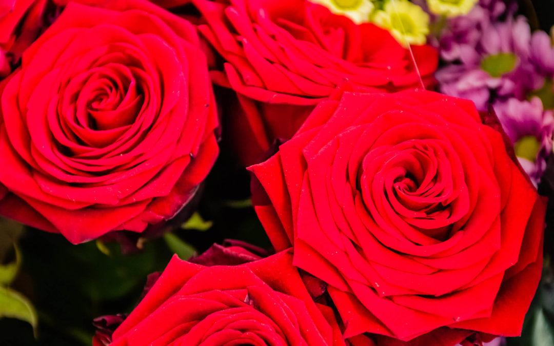 Rose Saint-Valentin à Saint-Avold : commandez votre bouquet en quelques clics