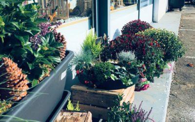 Offrir des fleurs à Saint-Avold