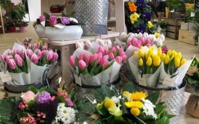 5 bonnes raisons d'offrir des fleurs !